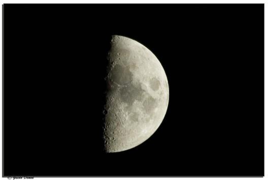 Halve Maan