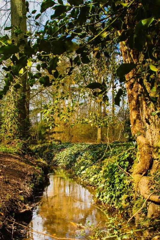 Arboretum Bokrijk