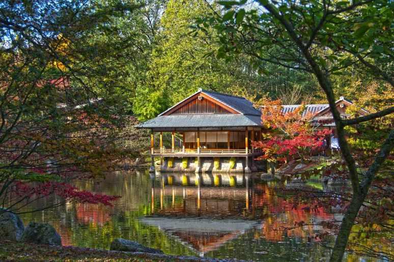 sized_Japanse tuin 1(001)