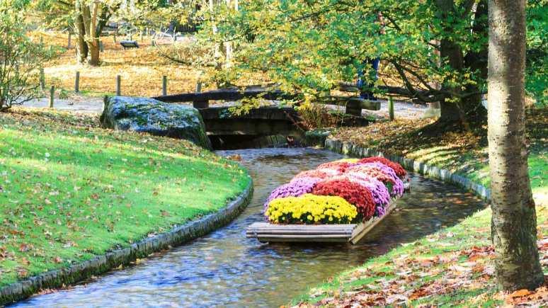 Japanse Tuin 3