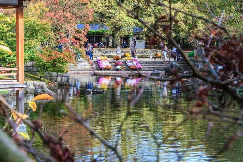 Japanse Tuin 12