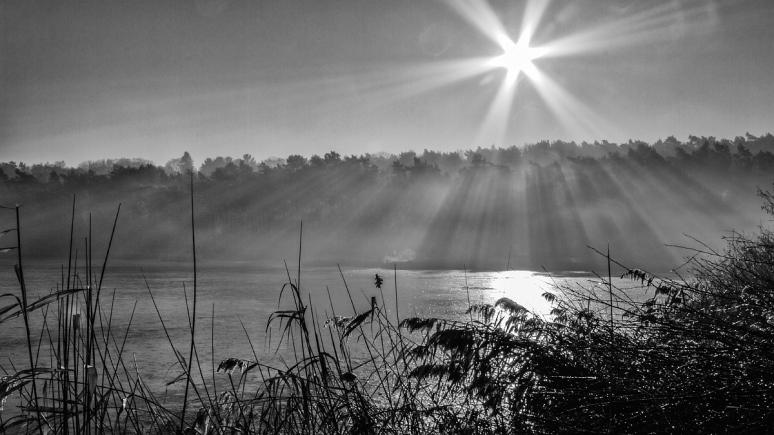 Terlaemen-ochtendnevel