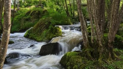 Moulin de Broaille-20