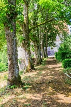 Moulin de Broaille-153