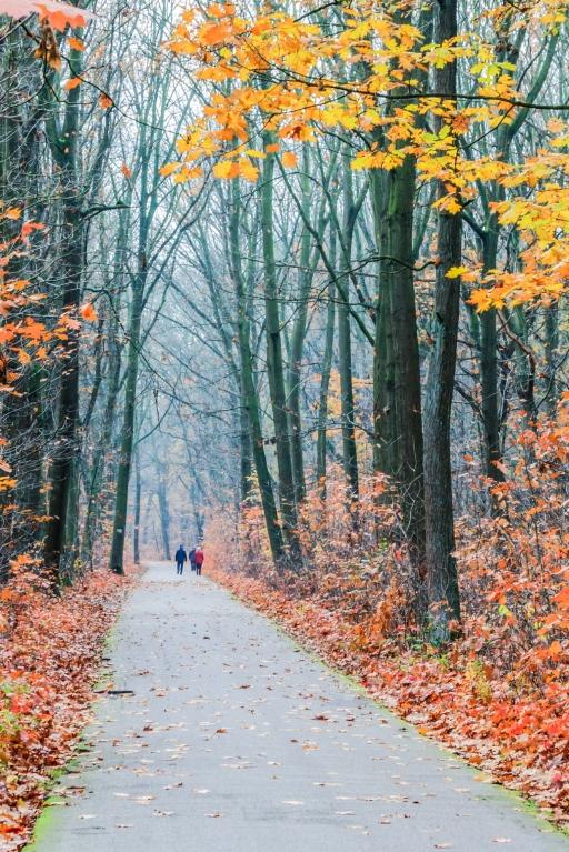 sized_wandeling-bokrijk-1